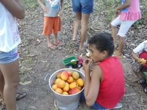 2014-12-mangue